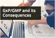 GxP/GMP and its Consequences for Quality Management, Quality Audit, Documentation, and Information Technology Systems